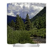 Bird Over Vail 1 Shower Curtain