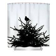 Bird Silhouette  Shower Curtain