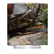 Birdrock Waterfall Shower Curtain