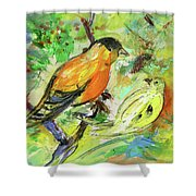 Birds 01 Shower Curtain