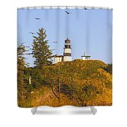 Birds In Flight Over Cape Shower Curtain by Craig Tuttle
