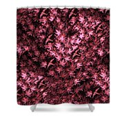 Birds In Redviolet Shower Curtain