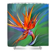 Birds Of Paradise 1 Shower Curtain