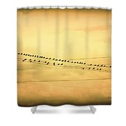 Birds On A Wire Yellow Orange Shower Curtain