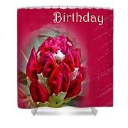 Birthday Card - Red Azalea Buds Shower Curtain