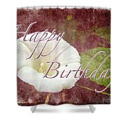 Birthday Greeting Card - Bindweed Morning Glory Shower Curtain