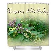 Birthday Greeting Card - American Beautyberry Shrub Shower Curtain