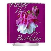 Birthday Greeting Card - Columbine Flower Shower Curtain
