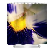 Birthplace Shower Curtain