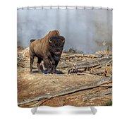 Bison And Geyser Shower Curtain