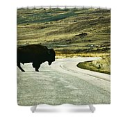 Bison Crossing Highway Shower Curtain
