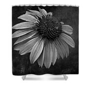 Bittersweet Memories - Bw Shower Curtain