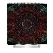 Bizzmuzz Oval Mandala Shower Curtain