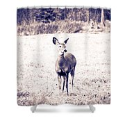 Black And White Deer Shower Curtain