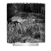 Black And White Dreams Shower Curtain