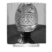 Black And White Egg Shower Curtain