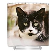 Black And White Feral Cat Shower Curtain