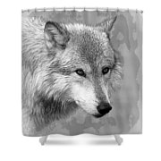 Black And White Grey Shower Curtain