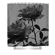 Black And White Roses Shower Curtain