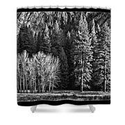 Black And White Tree Groupings Shower Curtain
