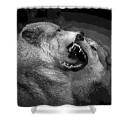 Black And White Wolf Fight Shower Curtain