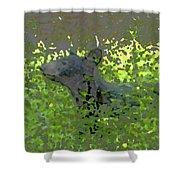 Black Bear In Green Shower Curtain