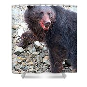 Black Bear Bloodied Lunch Shower Curtain