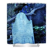 Black Bird Perched On Old Tombstone Shower Curtain
