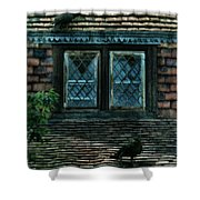 Black Birds Sitting On Roof By Window Shower Curtain