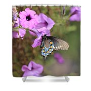 Black Blue And Orange Butterfly V3  Shower Curtain