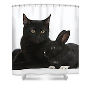 Black Cat And Rabbit Shower Curtain