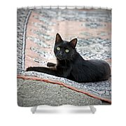 Black Cat On A Persian Rug Shower Curtain