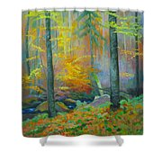 Black Forest Stream Shower Curtain