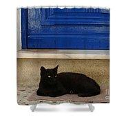 Black Greek Cat Shower Curtain