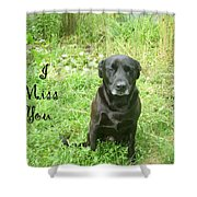 Black Lab Miss You Shower Curtain