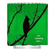Black  On Green Shower Curtain