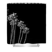 black Palms Shower Curtain