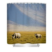 Black Rhinos Walking Across The Crater Shower Curtain