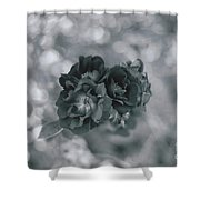 Black Rose With Bokeh Shower Curtain