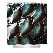 Black Sea Bass Scales Shower Curtain