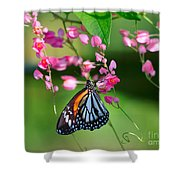 Black Veined Tiger Butterfly Shower Curtain
