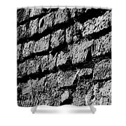 Black Wall Shower Curtain