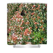 Black With Orange Dots Butterfly Shower Curtain