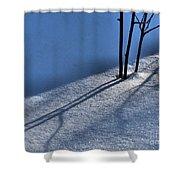Blackberry Blue Shower Curtain
