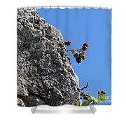 Blackberry On The Rock Top. Square Format Shower Curtain