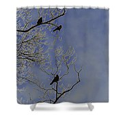 Blackbirds Shower Curtain