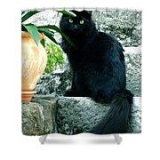 Blacky Cat Shower Curtain