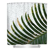 Bladed Leaf Against Stucco Wall Shower Curtain