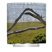 Bleached Wood And Diamond Waves Shower Curtain
