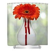 Bleeding Gerbera Shower Curtain